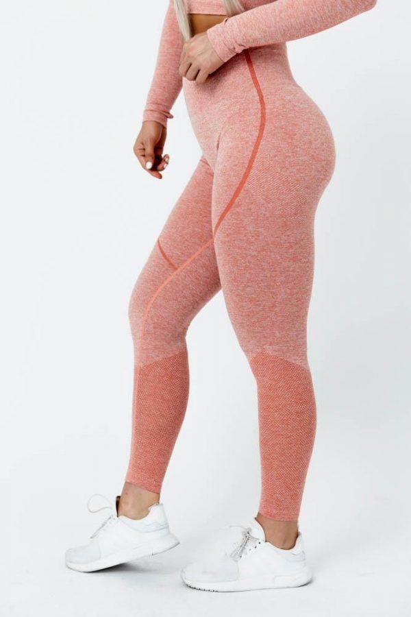 Seamless Leggings, gym leggings, outfits, pegasus apparels